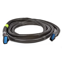 Extension Harness